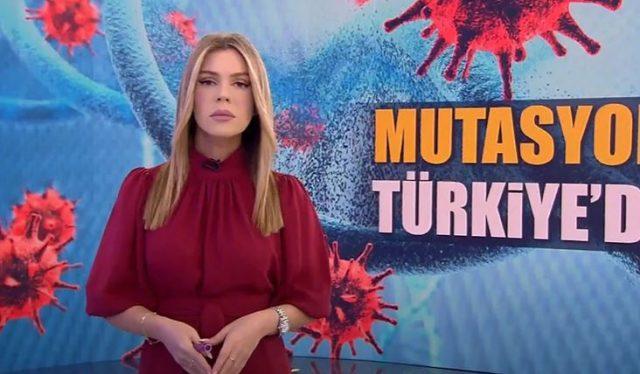 Merve Dinçkol